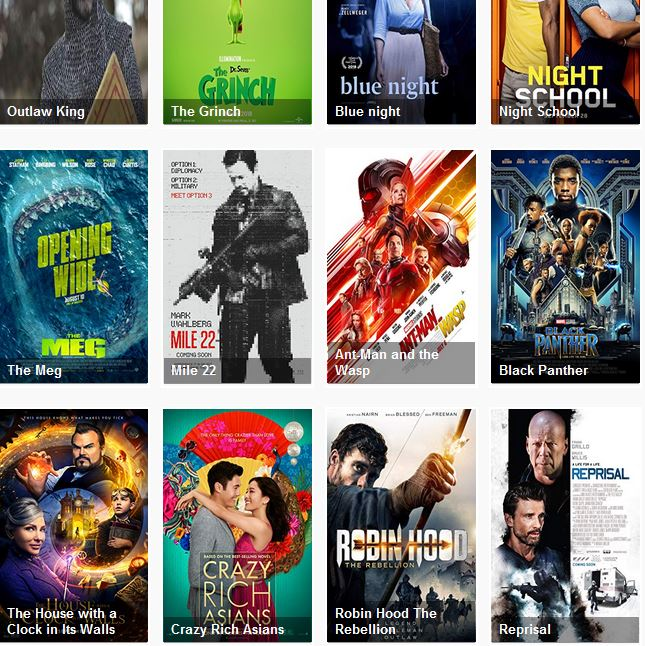 license to wed full movie 123movies