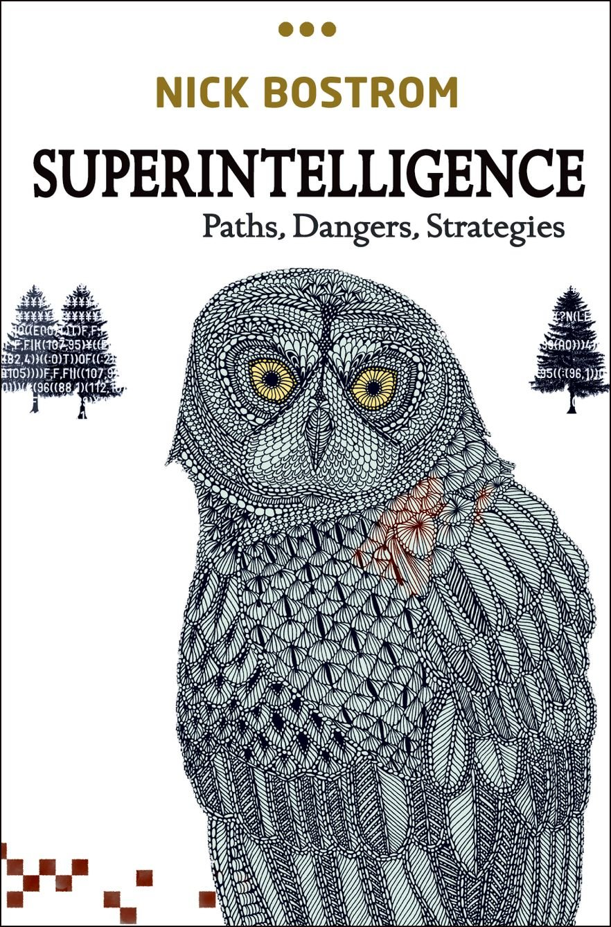 Superintelligence Paths, Dangers, Strategies
